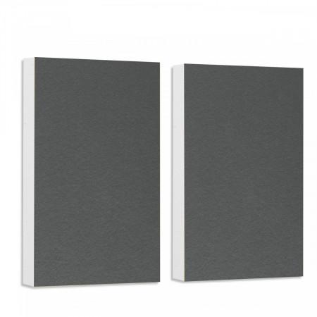 2 Basotect ® G+ Schallabsorber Akustik Schalldämmung je 82,5x55cm (Granitgrau)