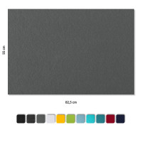 2 Schallabsorber aus Basotect ® G+ / Akustik Schalldämmung je 82,5x55cm (Granitgrau)